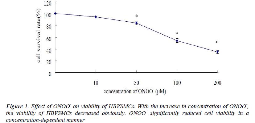 biomedres-Effect-ONOO-viability-HBVSMCs