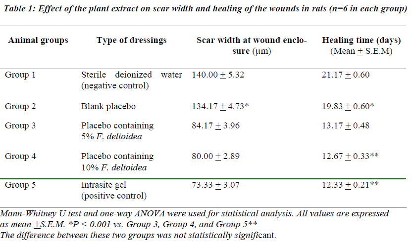 biomedres-Effect-plant-extract-scar