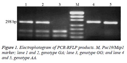 biomedres-Electrophotogram-genotype