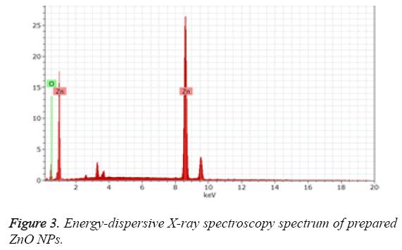 biomedres-Energy-dispersive-X-ray