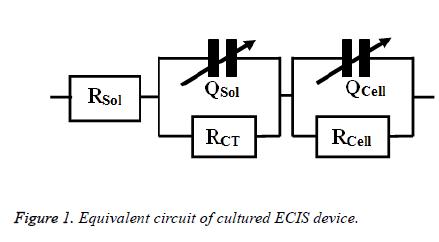 biomedres-Equivalent-circuit