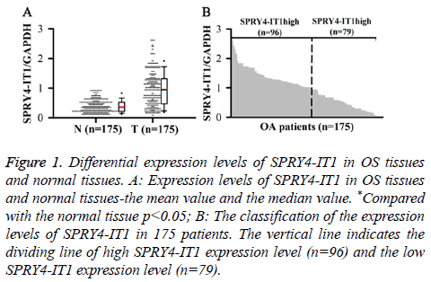 biomedres-Expression-levels