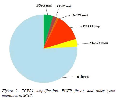 biomedres-FGFR-mutations