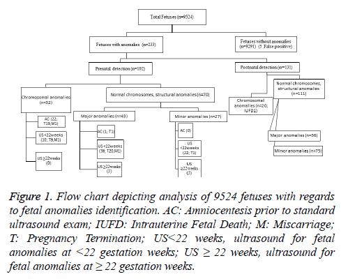 biomedres-Flow-chart