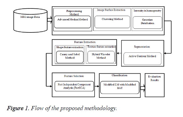 biomedres-Flow-proposed-methodology