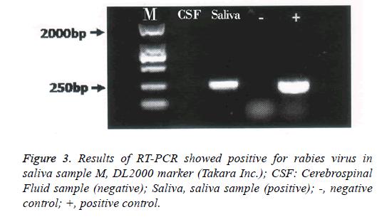 biomedres-Fluid-sample