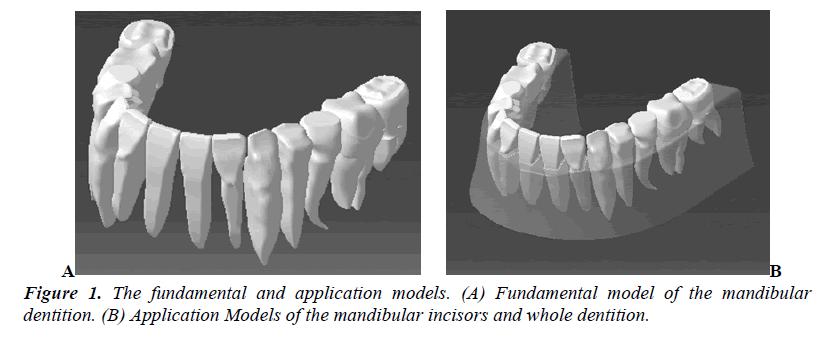 biomedres-Fundamental-model