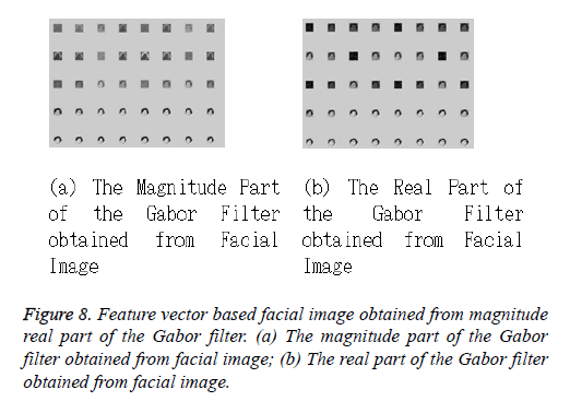 biomedres-Gabor-filter
