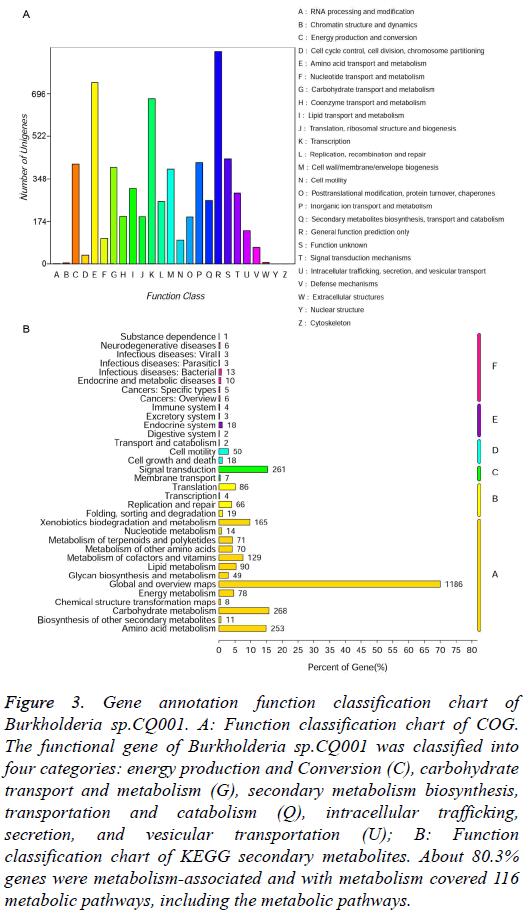 biomedres-Gene-annotation-function
