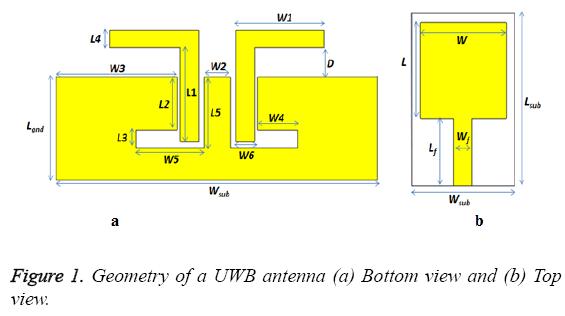biomedres-Geometry-UWB-antenna