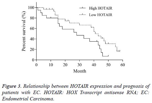 biomedres-HOTAIR-expression