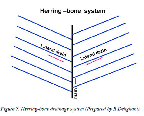 biomedres-Herring-bone