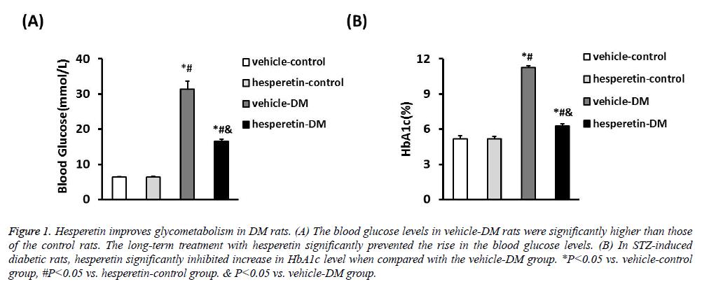 biomedres-Hesperetin-improves