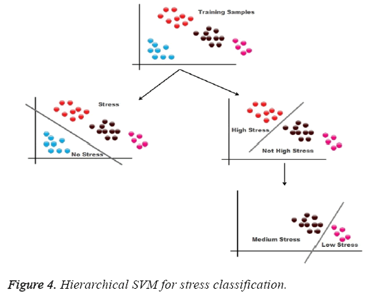 biomedres-Hierarchical-SVM-stress