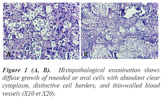 biomedres-Histopathological