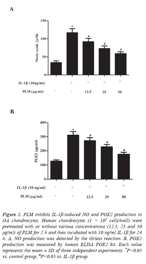 biomedres-Human-chondrocytes