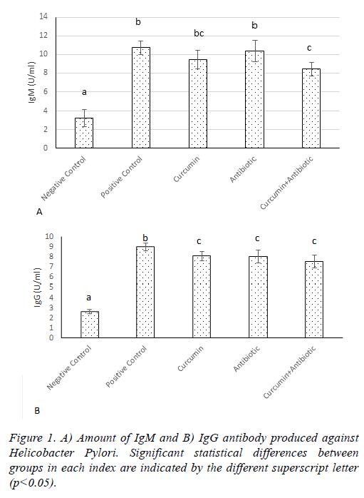 biomedres-IgG-antibody