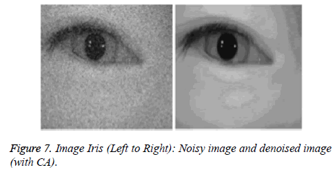 biomedres-Image-Noisy