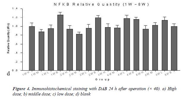biomedres-Immunohistochemical-staining-DAB