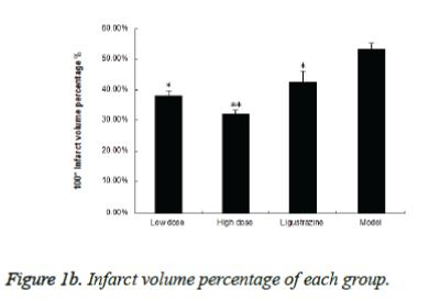 biomedres-Infarct-volume