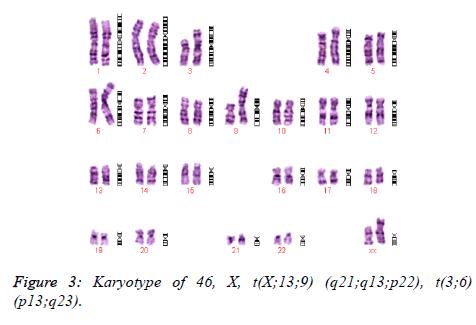biomedres-Karyotype