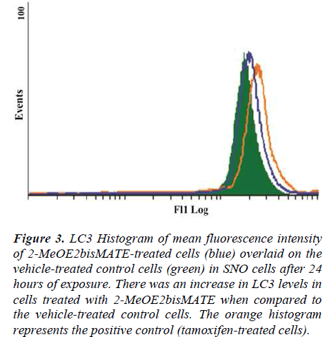 biomedres-LC3-Histogram-mean