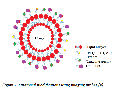 biomedres-Liposomal