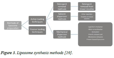 biomedres-Liposome