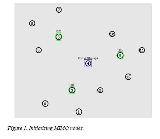 biomedres-MIMO-nodes