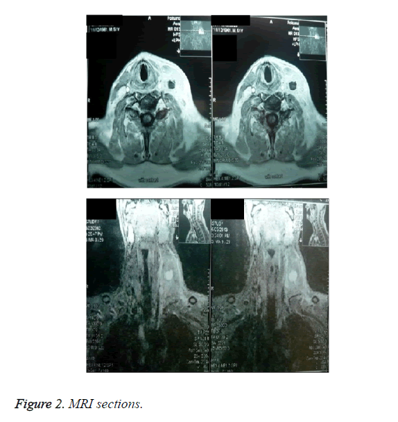 biomedres-MRI-sections