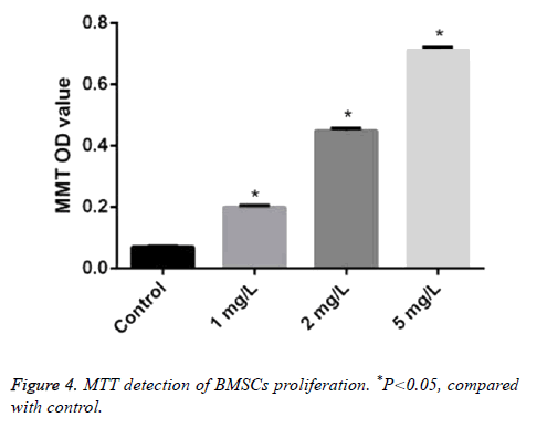 biomedres-MTT-detection