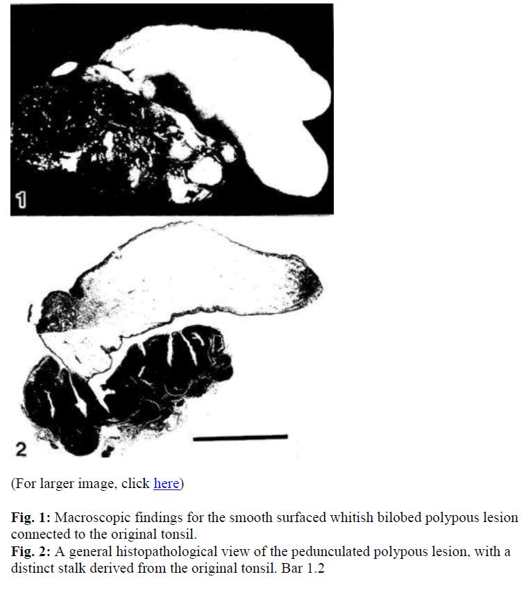 biomedres-Macroscopic-findings