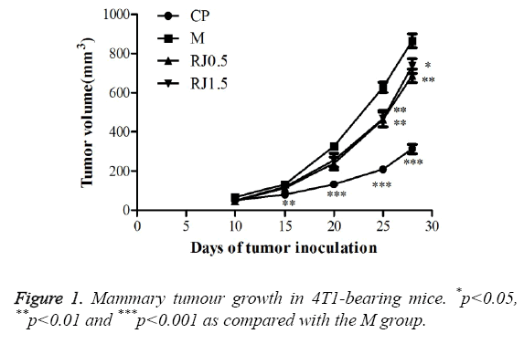 biomedres-Mammary-tumour-growth
