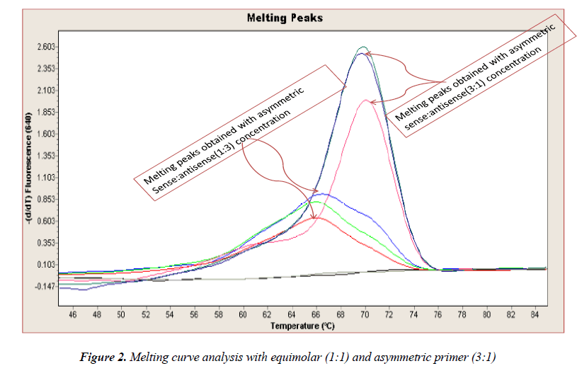 biomedres-Melting-curve-analysis