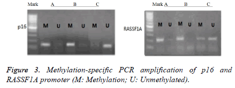 biomedres-Methylation-specific