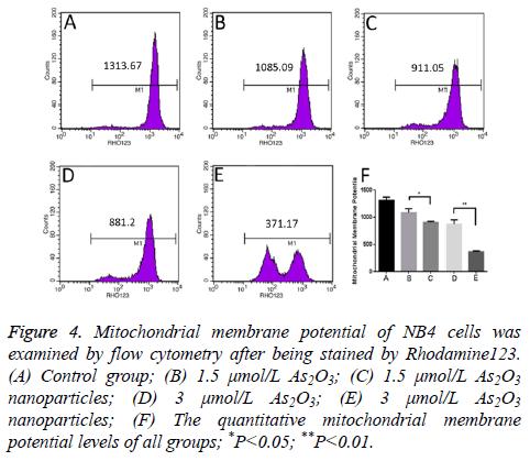 biomedres-Mitochondrial