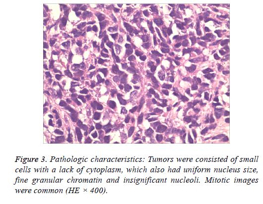 biomedres-Mitotic-images
