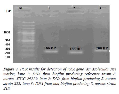 biomedres-Molecular-marker