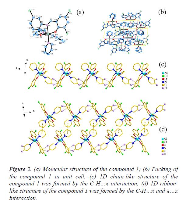 biomedres-Molecular-structure