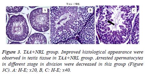 biomedres-NRL-group