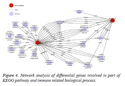 biomedres-Network-analysis