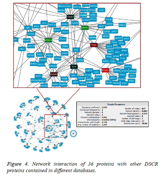 biomedres-Network-interaction