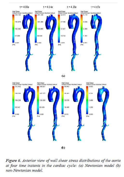 biomedres-Newtonian-model