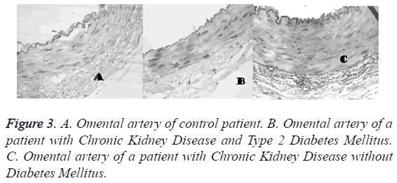 biomedres-Omental-artery-control