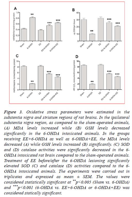 biomedres-Oxidative-stress
