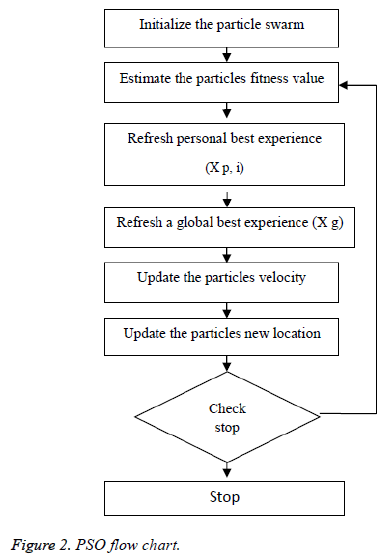 biomedres-PSO-flow