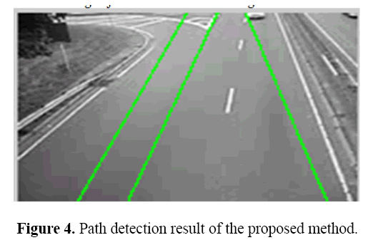 biomedres-Path-detection-result