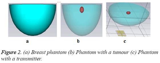 biomedres-Phantom-tumour