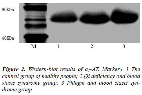 biomedres-Phlegm-blood-stasis