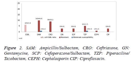 biomedres-Piperaciline-Sulbactam